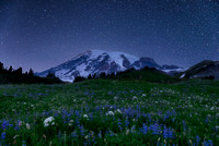 Mesmerizing Mount Rainier 9